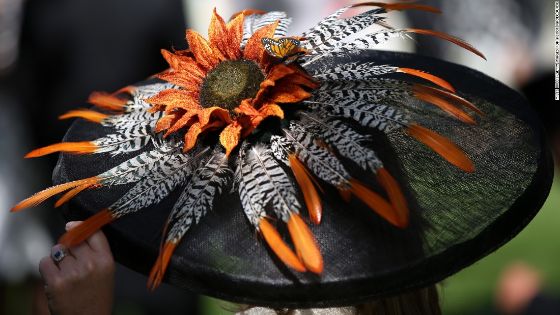 Feathers and a flower adorn a more ornate fascinator, with this example being worn at Ascot in June 2014.