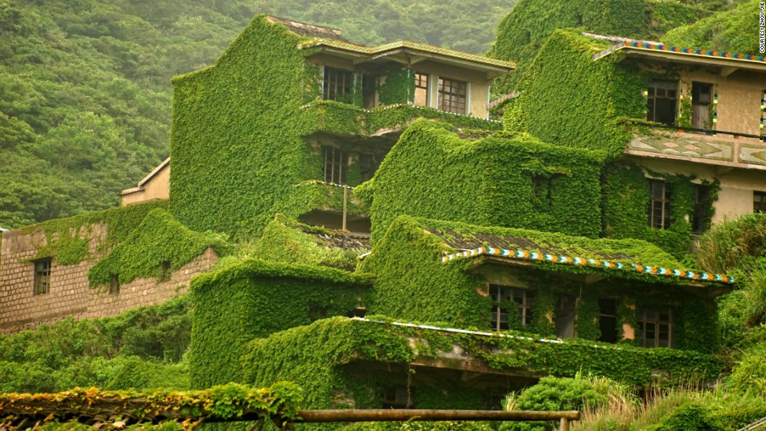 The vines that cover buildings look like an intentional part of the city's design, perhaps to add a touch of greenery.