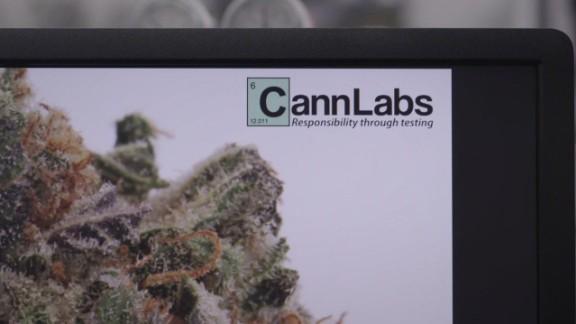 cannabis labs high profits_00001806.jpg