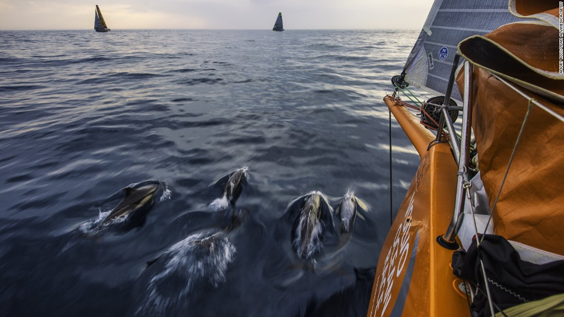 Dolphins swim near a boat competing in the eighth stage of the Volvo Ocean Race on Monday, June 8. The stage started in Lisbon, Portugal, and ended in Lorient, France.