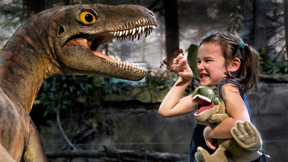 The Royal Tyrrell Museum of Paleontology