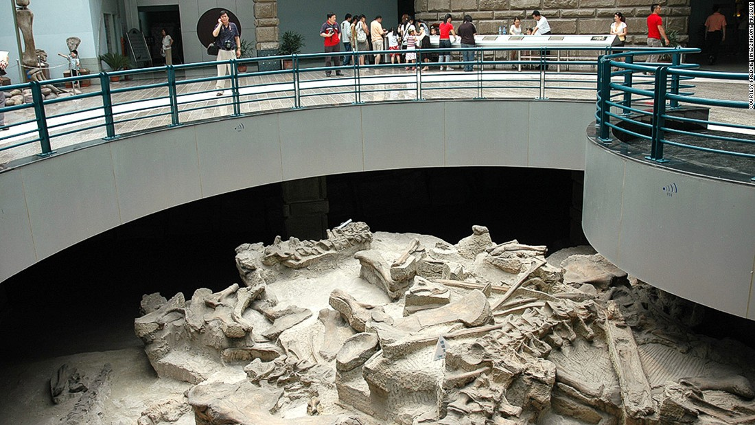 The Zigong Dinosaur Museum sits atop a fossil site, giving visitors a firsthand look at an excavation site.