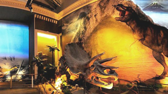 Jurassic Land is like Jurassic Park ... but different. One part education, another part entertainment, the museum mixes skeletons and fossils with animatronic dinosaurs.
