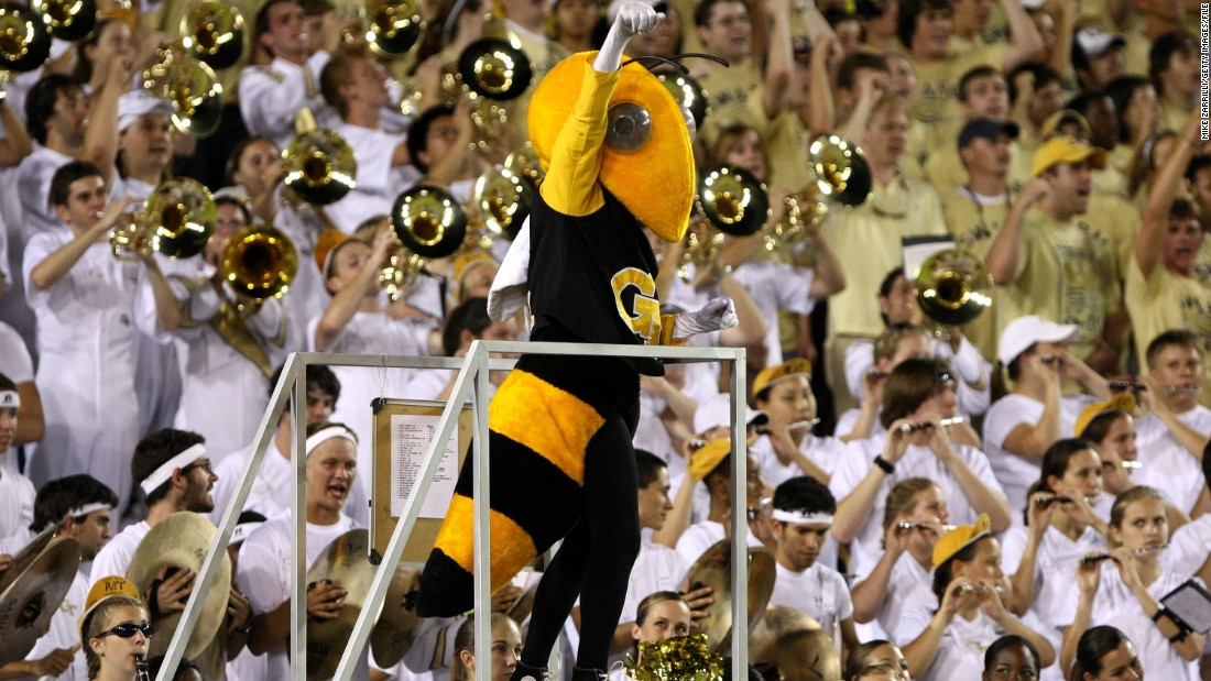 Meet Buzz, the mascot for the Georgia Tech Yellow Jackets. Who wouldn't be cheered by the sight of a six-foot wasp?