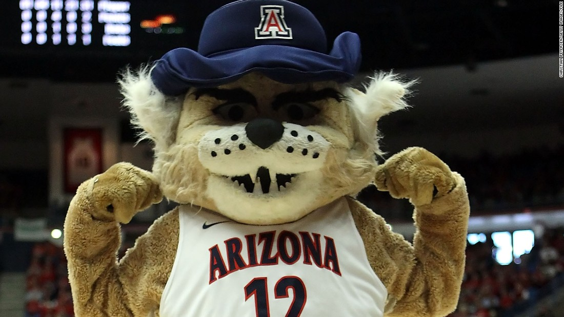 Wilbur. This terrifying wildcat is the mascot for the University of Arizona.