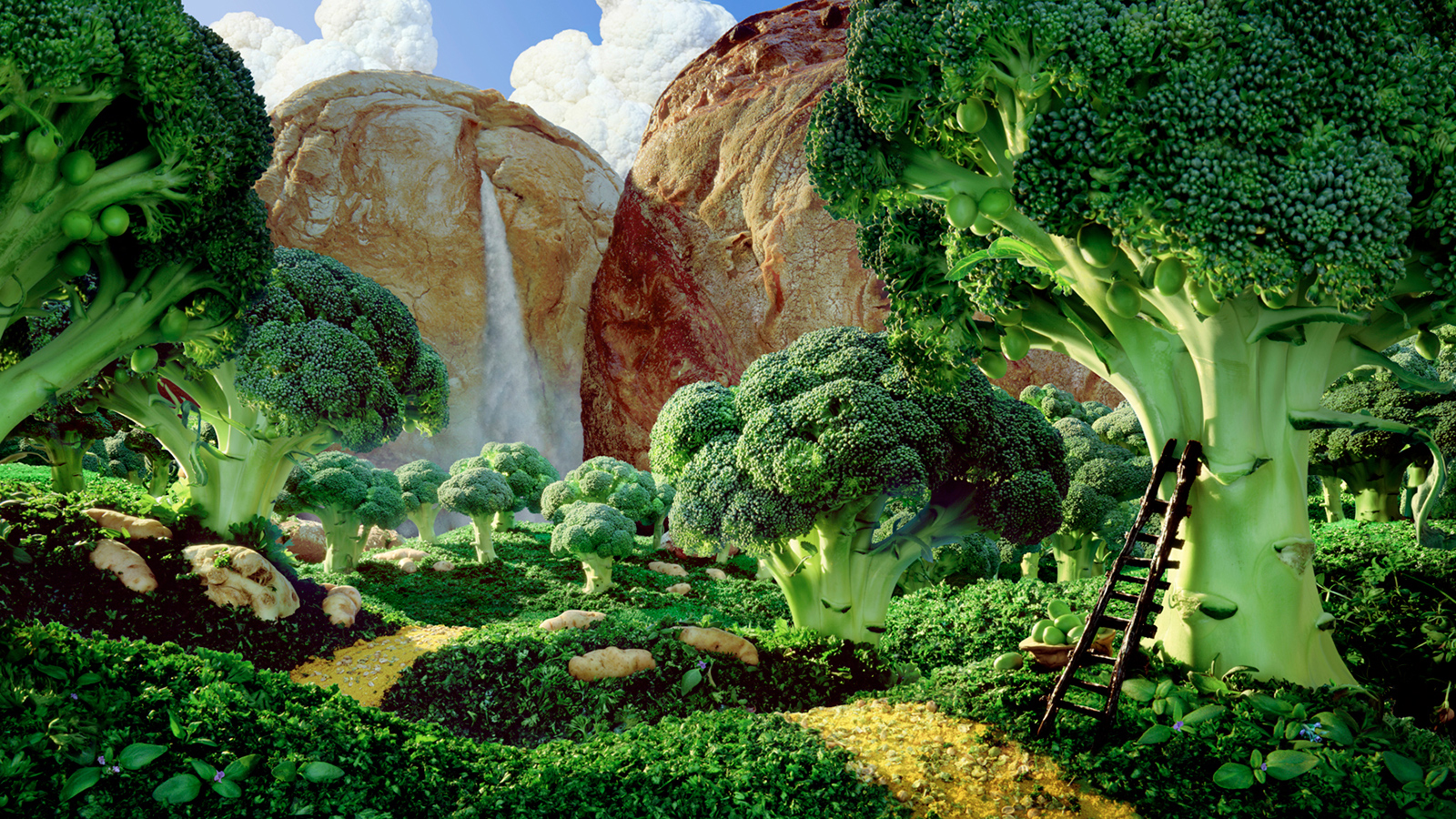 idea creativa fotografía de comida
