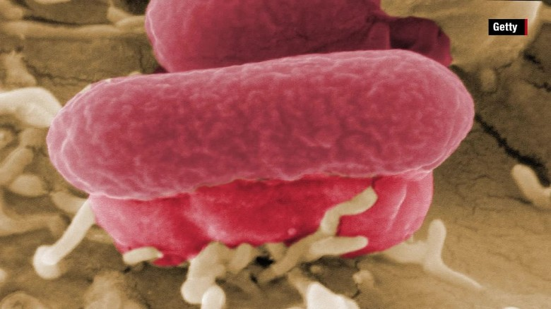 The dangers of E. coli