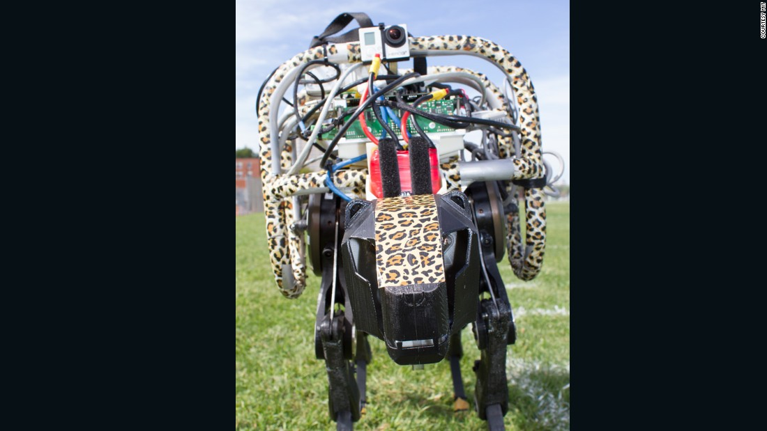 The robot can currently reach speeds of up to 10mph, but is believed to be able to go as fast as 30mph.