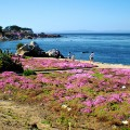 best of usa seaside escapes- pacific grove