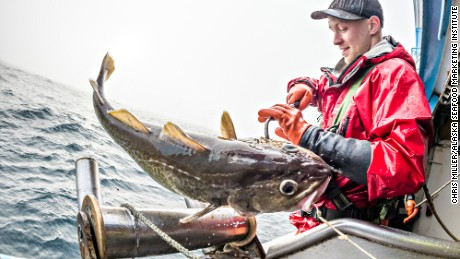 Cod fishing in the Bering Sea.