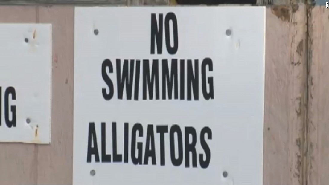 Man mocks alligators, jumps in water and is killed in Texas