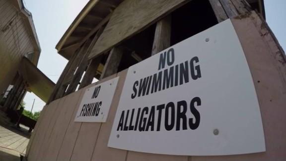 deadly texas alligator attack dnt_00004410.jpg