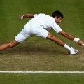 Djokovic stretch