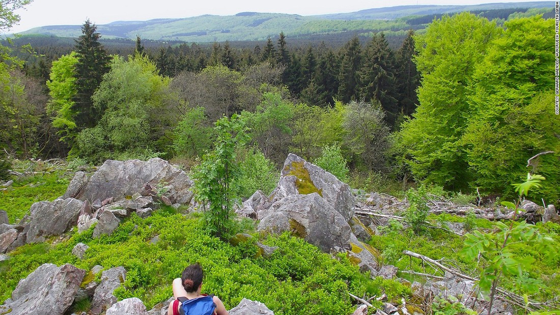 The Hunsrück-Hochwald National Park is Europe's newest national park. It's home to black storks and one of the largest wild forest cat populations in Europe. Visitors can hike one of the many routes to see the park's flora and fauna.
