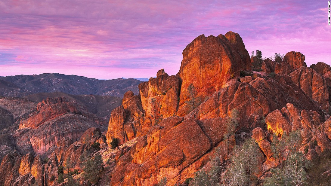 Pinnacle National Park's 32 miles of trail are filled with bizarre rock spires and charming wildflowers, which are pollinated by 400 species of bees.