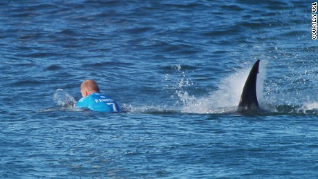 "EFFREYS BAY, South Africa (Sunday, July 19, 2015) --   Mick Fanning Of Australia is attacked by a shark during the Final of the JBay Open on Sunday July 19, 2015. Screengrab © WSL The images attached or accessed by link within this email (""Images"") are the copyright of the Association of Surfing Professionals LLC (""World Surf League"") and are furnished to the recipients of this email for world-wide editorial publication in all media now known or hereafter created. All Images are royalty-free but for editorial use only. No commercial or other rights are granted to the Images in any way.  The photo content is an accurate rendering of what it depicts and has not been modified or augmented except for standard cropping and toning. The Images are provided on an ""as is"" basis and no warranty is provided for use of a particular purpose. Rights to an individual within an Image are not provided. Sale or license of the Images is prohibited. ALL RIGHTS RESERVED."