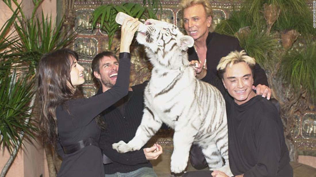 Actress Penelope Cruz feeds Atlas alongside actor Tom Cruise and Siegfried and Roy on January 5, 2002 at the Mirage Hotel and Casino.