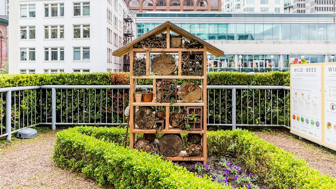 5 Luxury Hotels That Do Beekeeping   CNN Travel