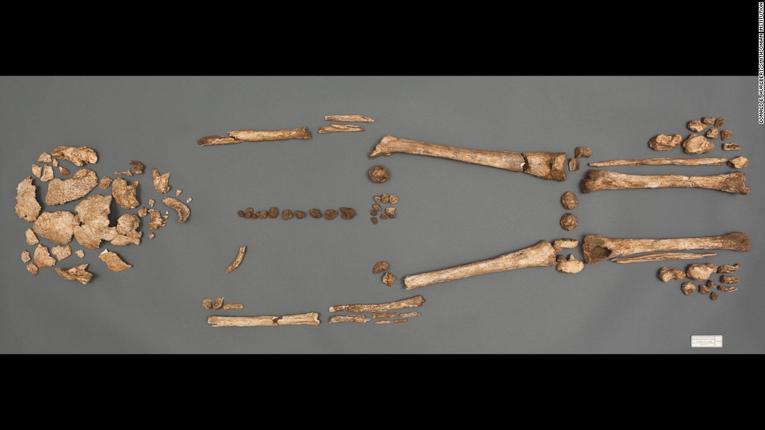 Researchers from the Smithsonian's National Museum of Natural History and the Jamestown Rediscovery Foundation found these remains buried without a coffin. All the bodies were found in the chancel of the church, a burial spot reserved for the colony's elite.