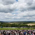 goodwood ladies day racecourse view