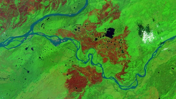 A satellite image shows the aftermath of a wildfire in Alaska in 2015. Burned forest appears brown and unburned forest is green.