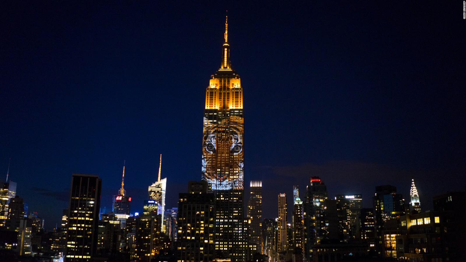 Empire State Building Shines Light On Endangered Species | CNN Travel Gallery