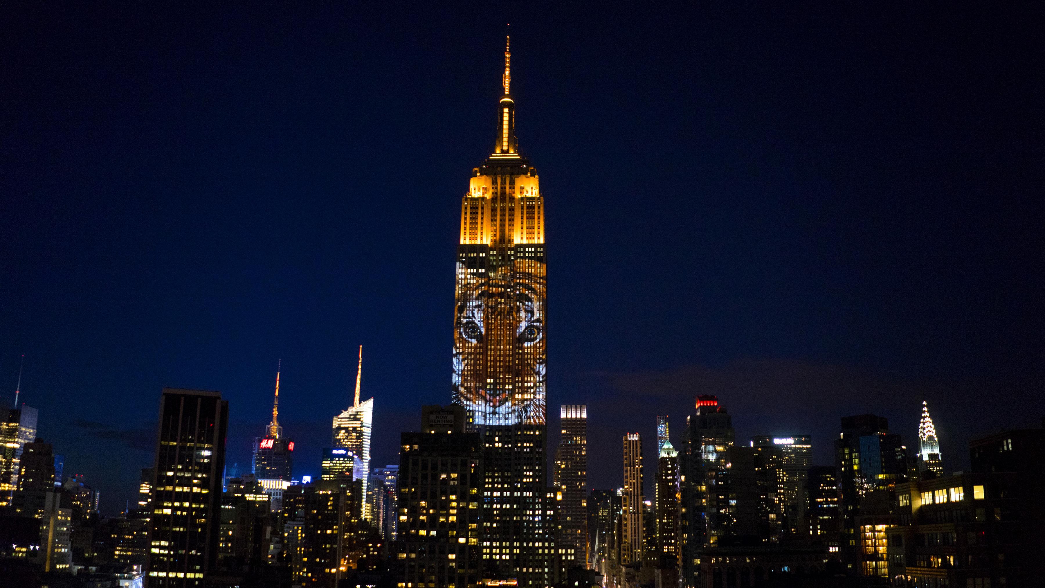 Empire State Building Shines Light On Endangered Species Cnn Travel
