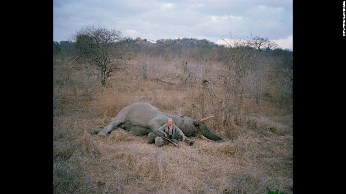 Untitled hunter with trophy elephant, Zimbabwe.