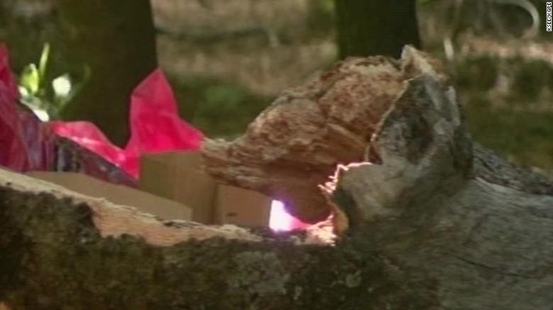 yosemite minors killed tree limb vo sot_00003902 & Tree limb falls on tent in Yosemite killing 2 youths - CNN