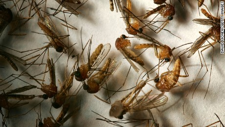 West Nile Virus Fast Facts