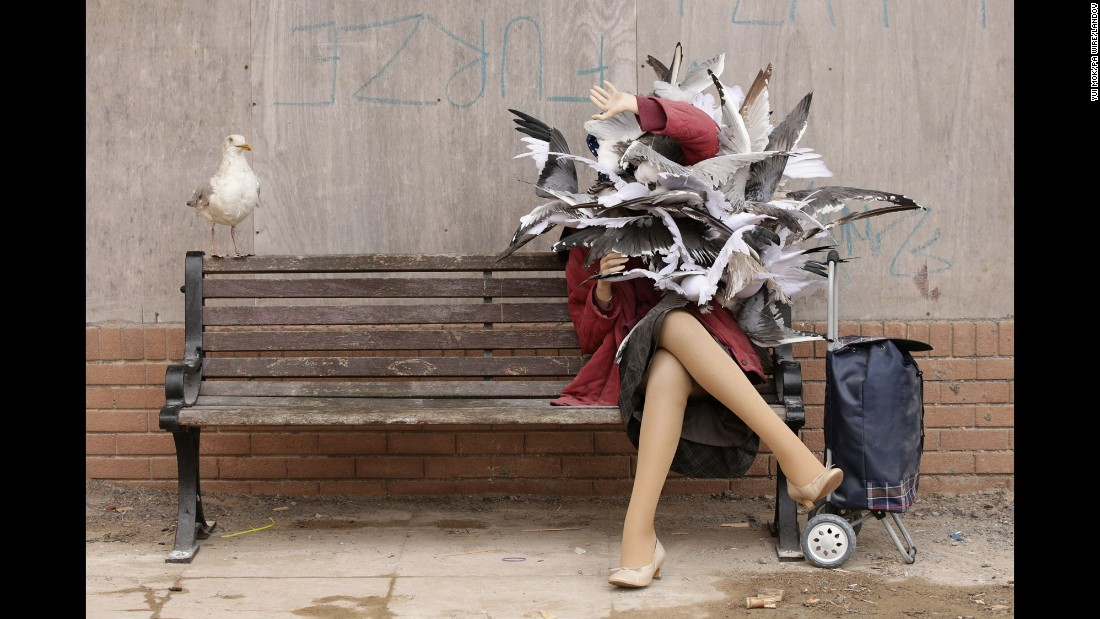 "This art installation by the street artist Banksy shows a woman being attacked by seagulls. It's part of Banksy's ""Dismaland,"" <a href=""http://www.cnn.com/2015/08/20/arts/banksy-dismaland-art-exhibition/"" target=""_blank"">a ""bemusement park"" exhibition</a> that opens Saturday, August 21, in Weston-super-Mare, England."