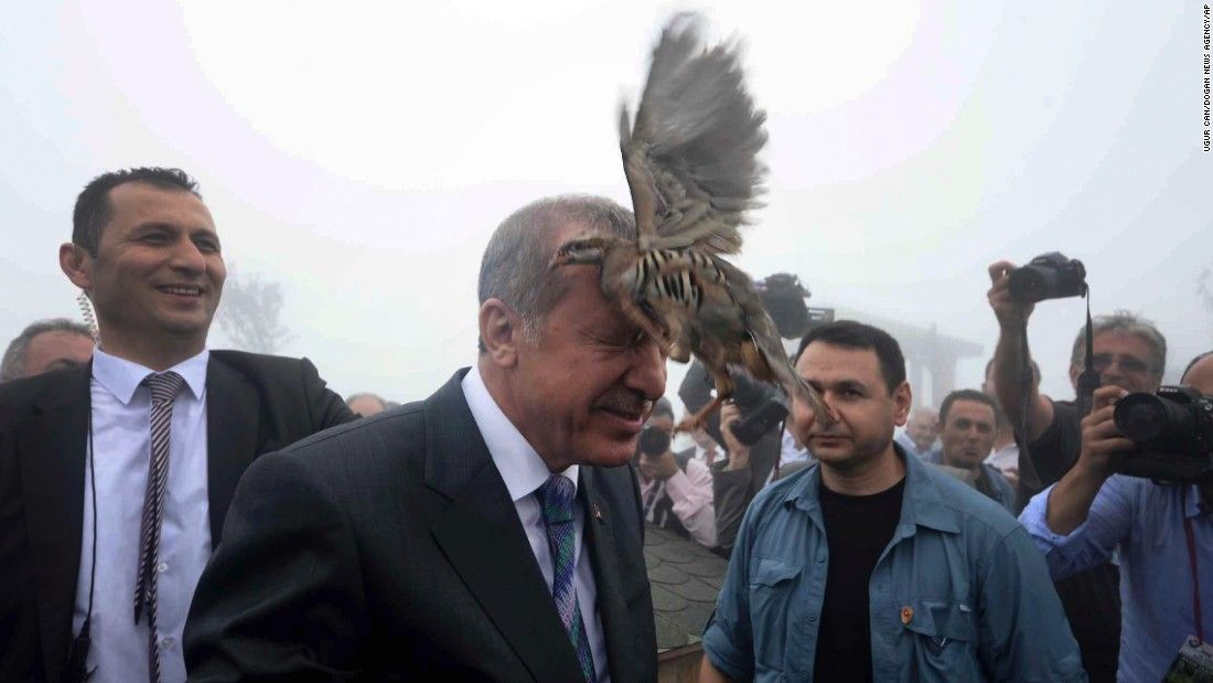 Turkish President Recep Tayyip Erdogan releases a bird during an opening ceremony for a new mosque in Rize, Turkey, on Friday, August 14.