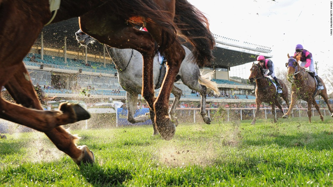 Horses kick up sand during a race in Melbourne on Saturday, August 22.