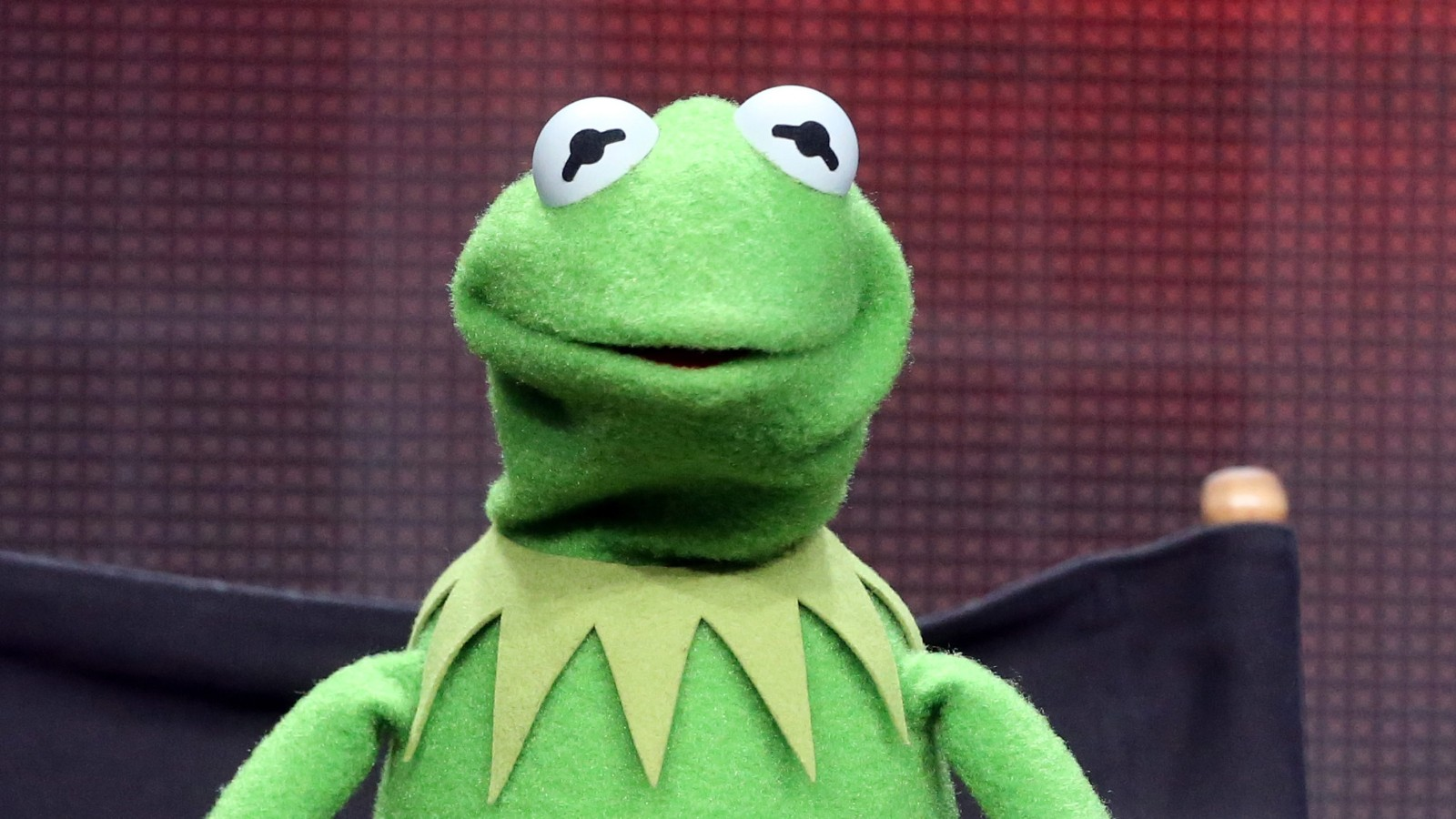 Kermit the Frog: There's no new lady (pig) in my life - CNNKermit Drinking Bleach