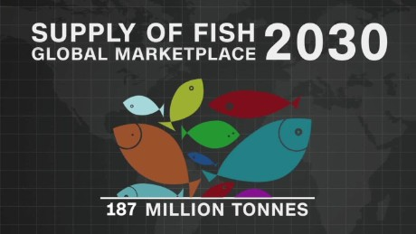 spc africa view world fisheries_00001811