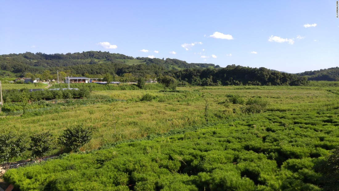 A paddy field in Jung Myeon, just miles away from the Korean Demilitarized Zone (DMZ), is pictured. In mid-August, North Korea fired a projectile aimed at a South Korean military loudspeaker, which was blasting news about capitalism and K-pop. North Korea viewed the broadcast as provocation. South Korea responded to its northern neighbor by firing back a few dozen shells. Most people in Jung Myeon are farmers. When an evacuation order following the confrontation ratcheted up, most residents were worried about their crops -- not whether a war will break out or not.