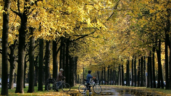 People walk with bikes in a park in Moscow as leaves turn golden with the onset of Autumn on October 6, 2008. AFP PHOTO / DMITRY KOSTYUKOV (Photo credit should read DMITRY KOSTYUKOV/AFP/Getty Images)