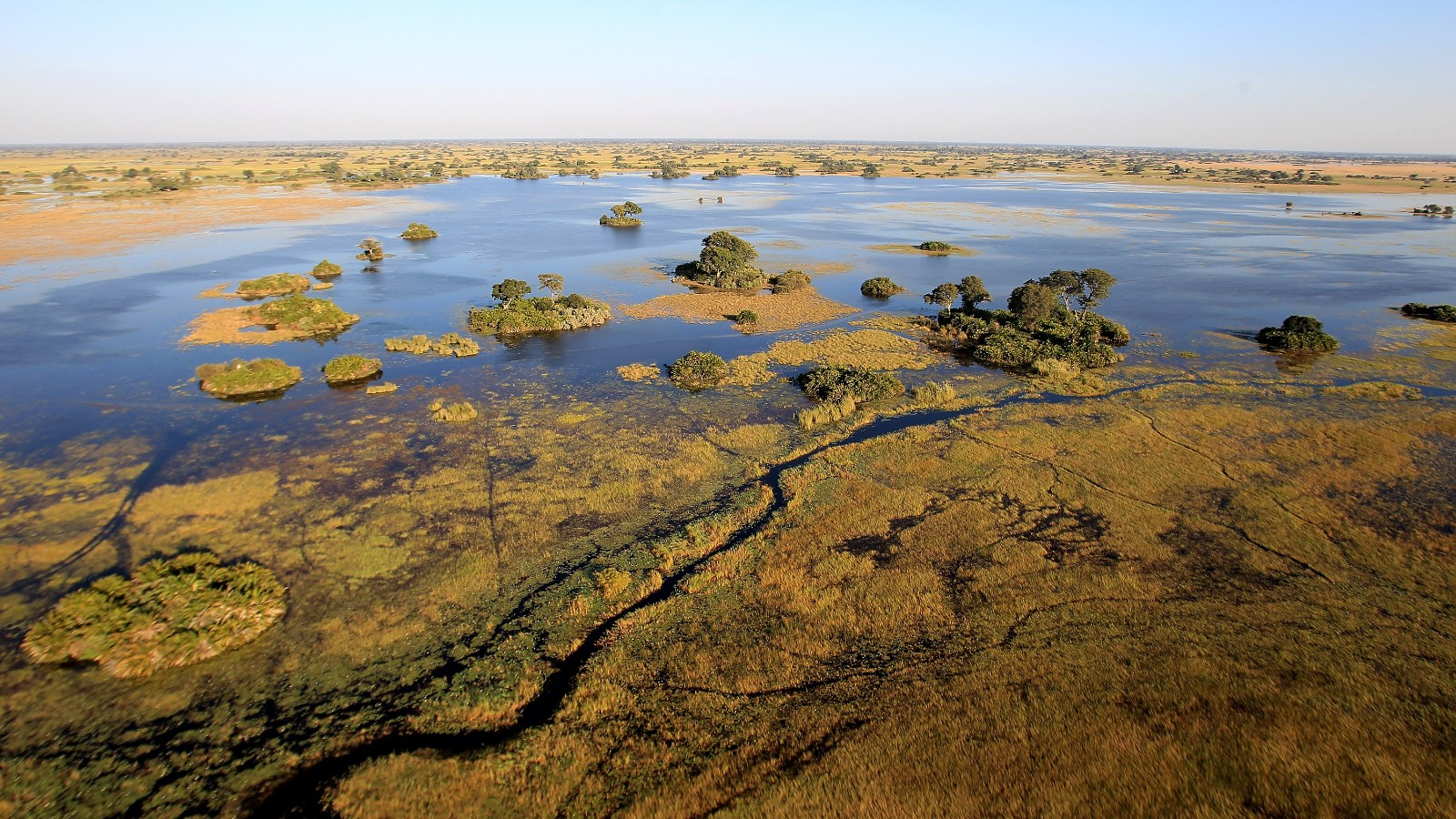 MAUN, BOTSWANA - JUNE 18:  The Okavango delta is seen from the air outside Jao Luxury Safari Camp on June 18, 2010 in Maun, Botswana. Camps run by Wilderness Safaris such as Jao and Kingspool situated deep in the water land of Botswana's Okavango delta rely on high-end luxury tourism with rooms costing upwards of USD 800 per person, per night in peak season. It has always been the policy of Botswana to concentrate on low volume, high value tourism, However with the recent economic downturn many of the lodges are suffering with a lack of bookings. The Okavango Delta (or Okavango Swamp), in Botswana, is the world's largest inland delta and is home to an abundance of wildlife.  (Photo by Chris Jackson/Getty Images)