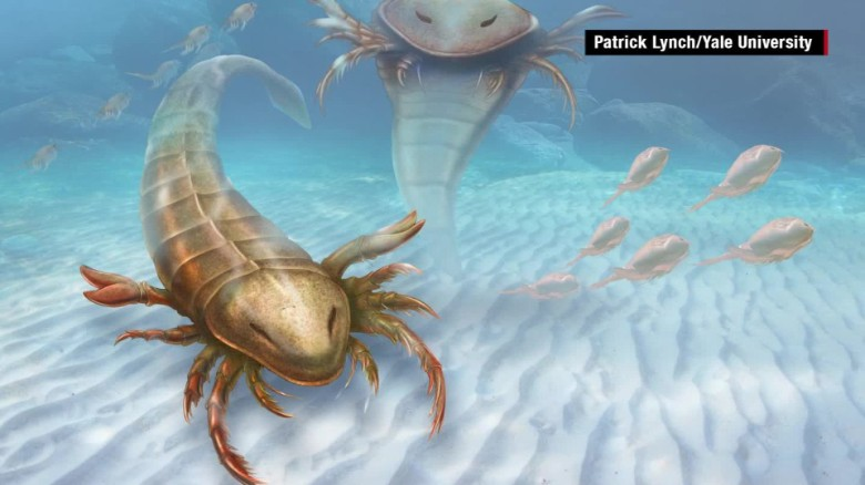 Giant prehistoric scorpion discovered
