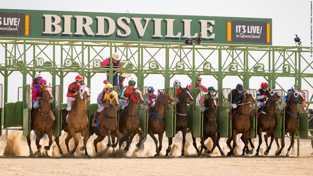 And they're off! The 12-strong field of the 2015 Birdsville Cup get underway in the one-mile race around the dirt track -- the highlight of the 13-race meet which boasts a AUS$200,000 ($140,000) prize pot.