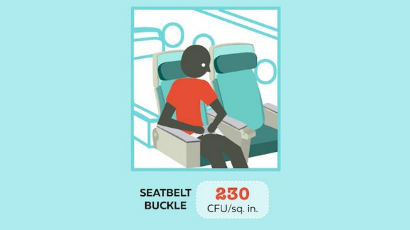 Buckle up -- then grab the hand sanitizer. According to Travelmath