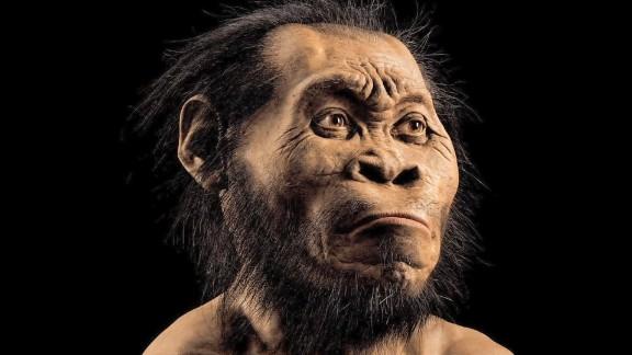 human ancestor species discovered south africa mckenzie pkg_00002221.jpg