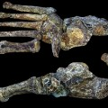 RESTRICTED Homo Naledi Foot Wits