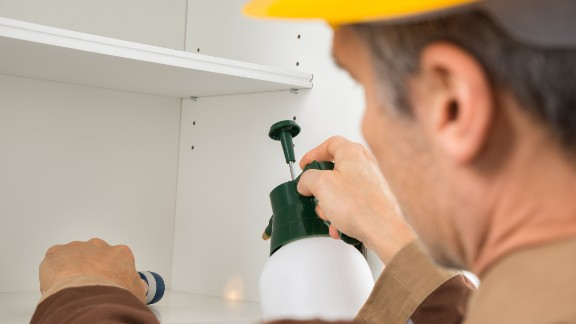 Close-up Of Pest Control Worker Spraying Pesticides In The Light Of Torch On Shelf