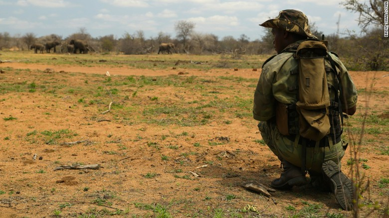 New defense in the rhino wars