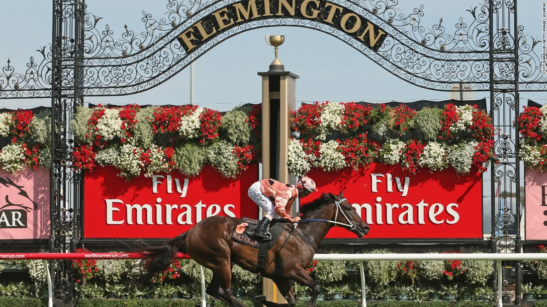 A more recent Australian success story is Black Caviar, who retired from flat racing after her 25th consecutive victory in 2013.