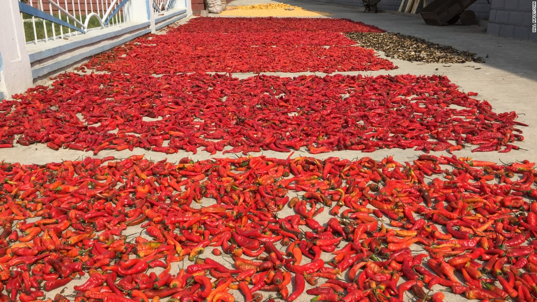 Chili peppers lie in the sun at the Jang Chon farm. Peppers are used for making kimchi, the fermented cabbage dish that is a staple of the North Korean diet.