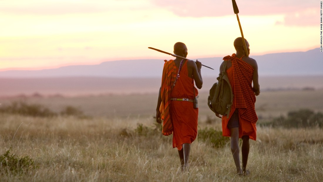 "Tanzania's famous Maasai warriors survey the savannahs of the Great Rift Valley. Traditionally known as herders, livestock are a vital resource for the Maasai. Their diet consists largely of cow's meat, milk and blood, tapped from the jugular with no lasting damage to the animal. On certain occasions the two are combined in something akin to a blood milkshake. Modernization is creeping into Maasai life however and food is becoming more varied, and dinner is as likely to include maize, rice, potatoes and ""goat leaves"" (cabbage)."