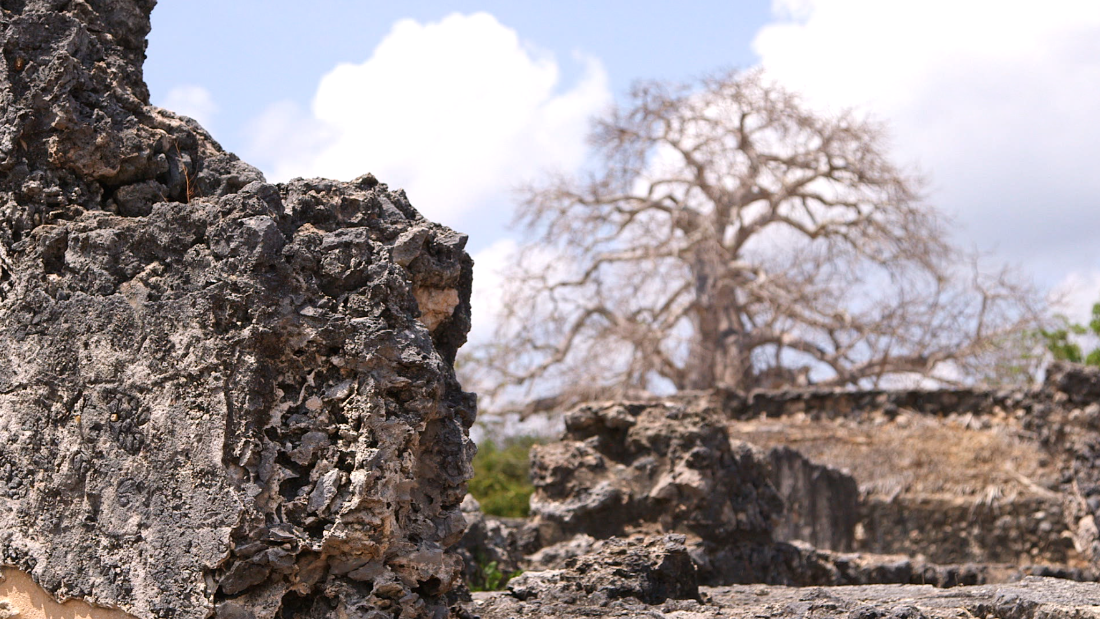 The coral stone and limestone dug up from under the Indian ocean to create the ancient architecture at Kilwa Kisiwani.