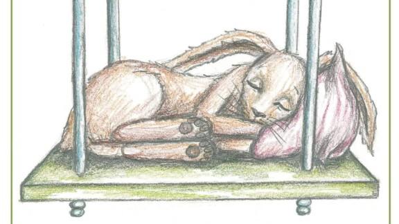 Book Puts Kids Sleep Rabbit orig_00001524.jpg